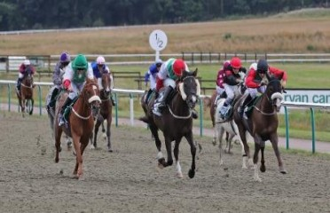 Wathba Stallions Handicap Stakes