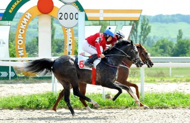 Pesniar Stakes (Russian Group III)