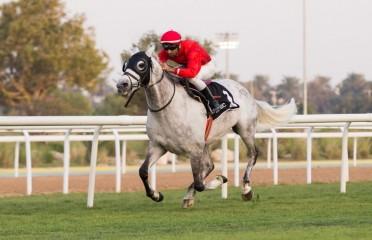 Al Khatim
