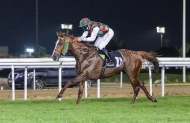 Sheikh Zayed bin Sultan Al Nahyan Jewel Crown Prep