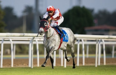 Al Ruwais Stakes Sponsored By Shadwell Farm