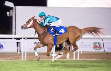Shadwell Gold Cup Sponsored By Dubai International Arabian Races