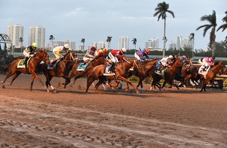 horse_race_terms1
